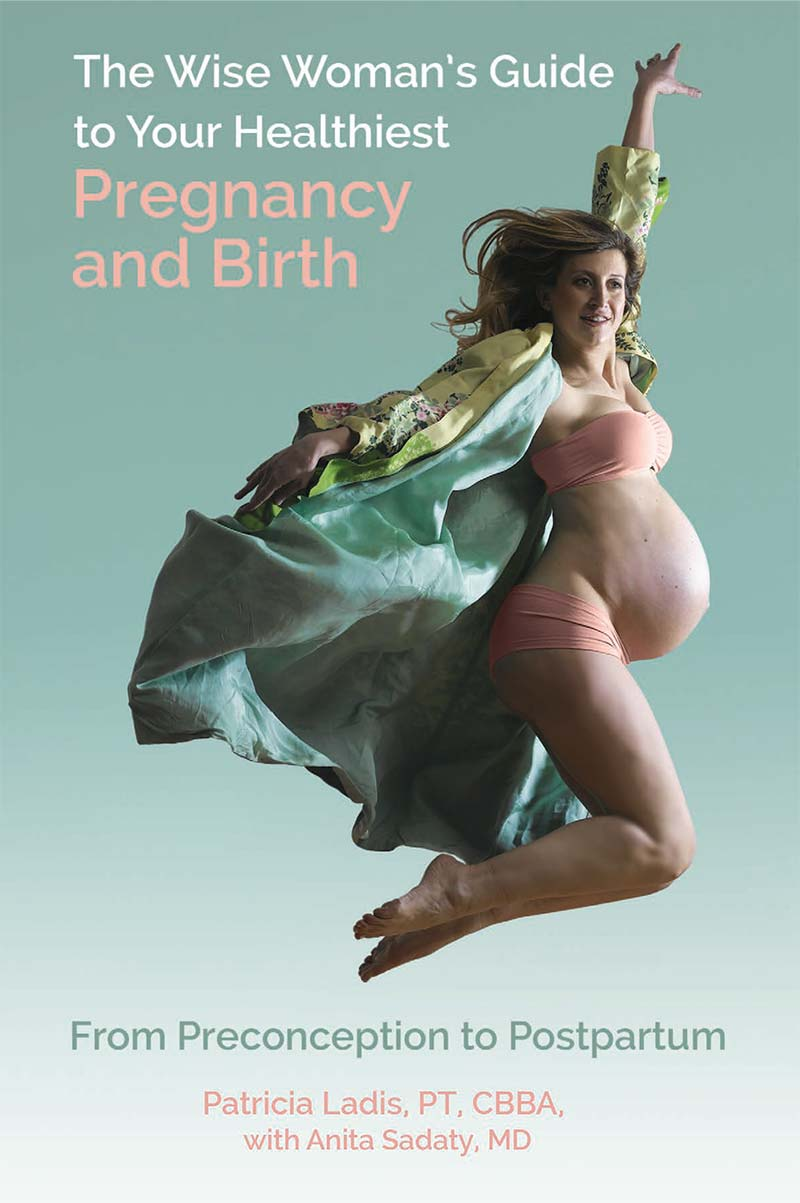 The Wise Woman's Guide to Your Healthiest Pregnancy and Birth by Patricia Ladis & Dr. Anita Sadaty